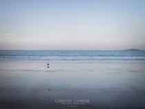 CANDIDE_CAMERA_PHOTOGRAPHE_DINARD_003__BSC0013